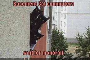 Basement Cat commuters  wait for monorail.