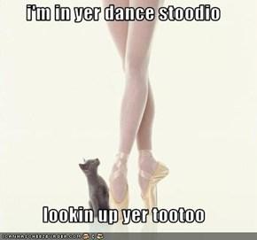 i'm in yer dance stoodio  lookin up yer tootoo