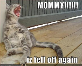 MOMMY!!!!!!  iz fell off again