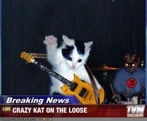 Breaking News - CRAZY KAT ON THE LOOSE
