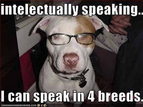 intelectually speaking..  I can speak in 4 breeds.