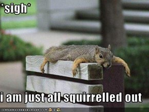*sigh*  i am just all squirrelled out