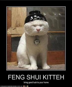 FENG SHUI KITTEH