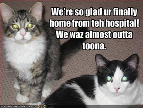 We're so glad ur finally home from teh hospital! 