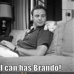 I can has Brando!