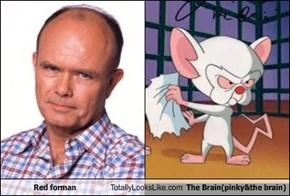 Red forman Totally Looks Like The Brain(pinky&the brain)