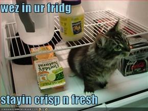 wez in ur fridg  stayin crisp n fresh