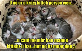 U no ur a krazy kitteh person wen...