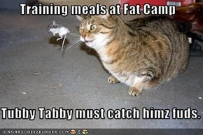 Training meals at Fat Camp  Tubby Tabby must catch himz fuds.