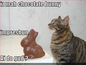 iz mah chocolate bunny  impreshun. Ai do gud ?