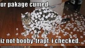 ur pakage cumed.    iz not booby-trapt. i checked.