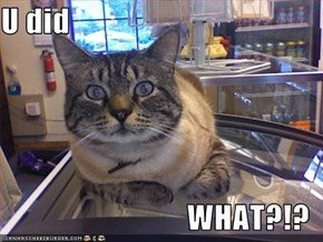 U did  WHAT?!?