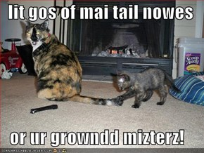 lit gos of mai tail nowes  or ur growndd mizterz!