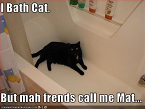 I Bath Cat.  But mah frends call me Mat...