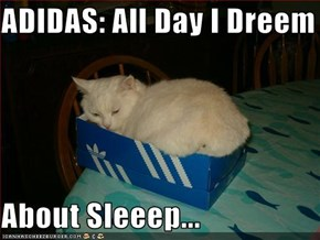 ADIDAS: All Day I Dreem  About Sleeep...