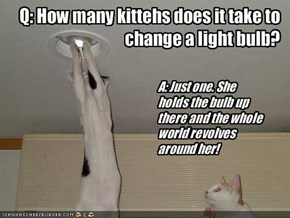 Q: How many kittehs does it take to change a light bulb?