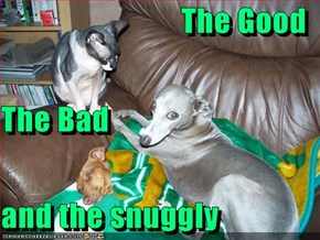 The Good  The Bad  and the snuggly