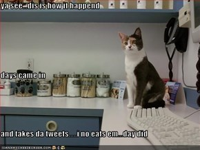 ya see...dis is how it happend days came in and takes da tweets.....i no eats em...day did