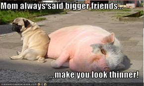 Mom always said bigger friends...  ...make you look thinner!
