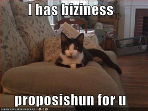 I has biziness  proposishun for u