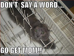DON'T  SAY A WORD....  GO GET MOM!!