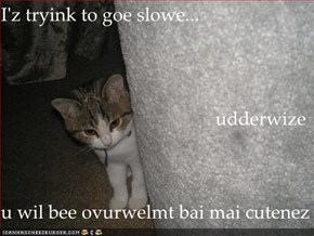 I'z tryink to goe slowe... udderwize u wil bee ovurwelmt bai mai cutenez