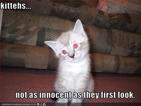 kittehs...  not as innocent as they first look.