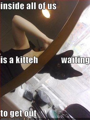 inside all of us is a kitteh             waiting to get out