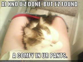 AI KNO U'Z DONE, BUT I'Z FOUND  A COMFY IN UR PANTS.
