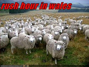 rush hour in wales