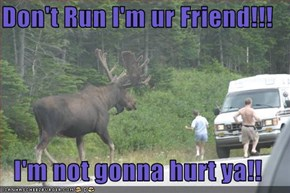 Don't Run I'm ur Friend!!!  I'm not gonna hurt ya!!