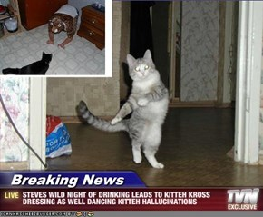 Breaking News - STEVES WILD NIGHT OF DRINKING LEADS TO KITTEH KROSS DRESSING AS WELL DANCING KITTEH HALLUCINATIONS