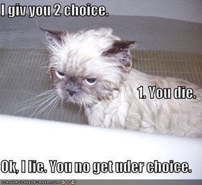 I giv you 2 choice. 1. You die. Ok, I lie. You no get uder choice.