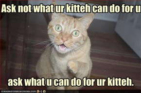 Ask not what ur kitteh can do for u