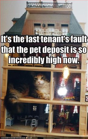 It's the last tenant's fault