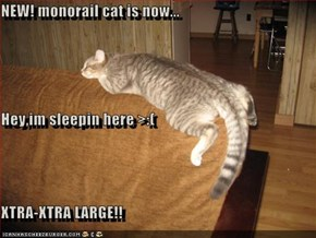 NEW! monorail cat is now... Hey,im sleepin here >:( XTRA-XTRA LARGE!!