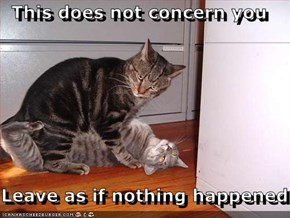This does not concern you  Leave as if nothing happened