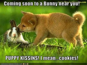 Coming soon to a Bunny near you!  PUPPY KISSINS! I mean...cookies!