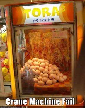 Crane Machine Fail