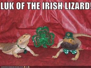 LUK OF THE IRISH LIZARD!!! :)