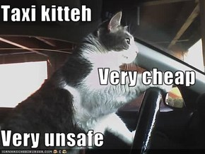Taxi kitteh Very cheap Very unsafe