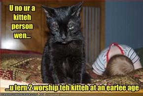 U no ur a kitteh person wen...