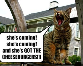 she's coming! she's coming! 