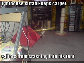lighthouse kittah keeps carpet   sailors from crashing into his tent