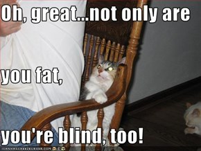 Oh, great...not only are  you fat, you're blind, too!