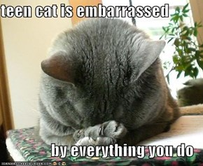 teen cat is embarrassed  by everything you do