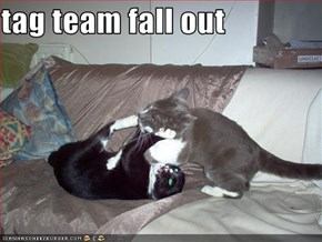 tag team fall out