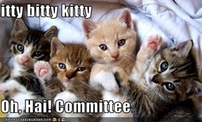 itty bitty kitty  Oh, Hai! Committee