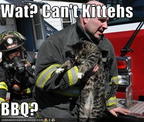 Wat? Can't Kittehs  BBQ?