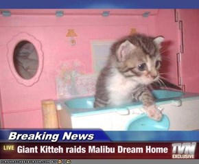 Breaking News - Giant Kitteh raids Malibu Dream Home
